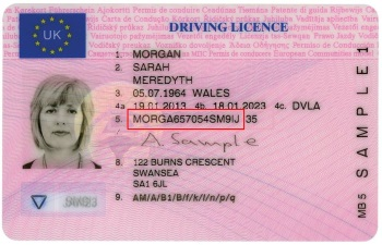 Example driving licence